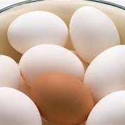 Яйцо в Алматы фото