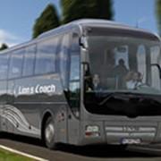 Туристические автобусы Lion's Coach фото