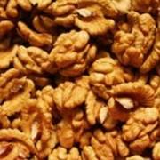 Орехи грецкие, опт фото