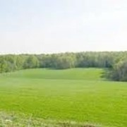 Подбор земельных участков фото