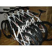 Прокат велосипедов. Nomad Atilla фото