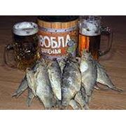 Рыбалка в Казахстане на о Балхаш.Рыба-Вобла фото