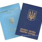 Оформление загран.паспортов, срочных загран.паспортов,детских проездных фото