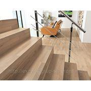 Деревянные ступени (лестница) фото