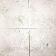 """Виктория """"Трава под снегом"""" фото"""