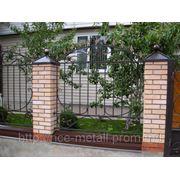 Забор металлический с элементами ковки. фото