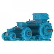 Электродвигатели W22 Чугунный корпус – Улучшенный КПД класса IE2 фото