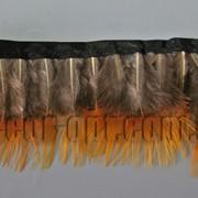 Перо-юбка из натуральных перьев 6см/48-50см 01 570824 фото