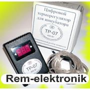 Высокоточный терморегулятор для инкубатора ТР — 07 фото