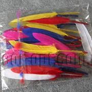 Перья 12-13 см 50 шт 150 фото
