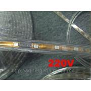 Светодиодная лента 220V, IP68 фото