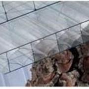 Поликарбонат сотовый Polygal(Израиль)4-32мм фото
