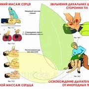 Стенд Непрямой массаж сердца. Освобождение дыхательных путей от инородных тел фото