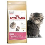 Сухой корм для котят Royal Canin Kitten Persian 32 0,4 кг фото