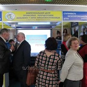 Международная выставка образования за рубежом World Edu – 2017 фото