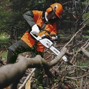 Обрезка деревьев бензопилой фото