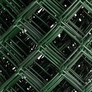 Сетка плетеная низкоуглеродистая пвх ТУ 14-4-1814-97 50 2.8 1800 фото