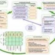 Оптимизация бизнес-процессов, Оптимизация инвестиционных и эксплуатационных финансовых потоков фото