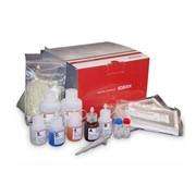 Тест для определения стельности КРС Visual Pregnancy Test (Idexx Inc.) фото