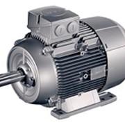 Электродвигатели для сушильных камер фото