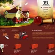 Разработка дизайна сайта. фото