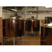 Минипивзавод, пивзавод 500 л, пивоваренное оборудование фото