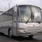 Автобус междугородний КавЗ-4238-02 фото