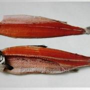 Трудоустройство в Польше Филетирование рыбы фото