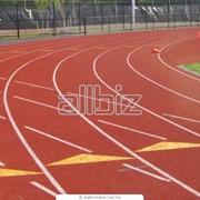 Покрытия для спортивных площадок фото