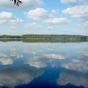 Разработка проектной экологической документации фото