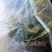 Укрытие для кустов и деревьев фото
