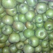 Яблоки (симиренко) фото