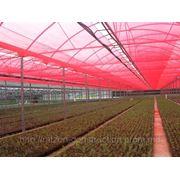 Chromatinet Red 30%, красная затеняющая сеть для ускоренного роста растений фото