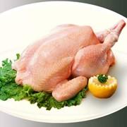 Мясо цыплят-бройлеров фото