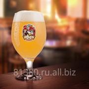 Пивзаводы и мини пивоварни для ресторанов фото