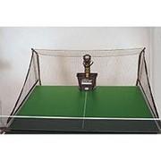 Сетка для улавливания мячей Donic 420255 фото