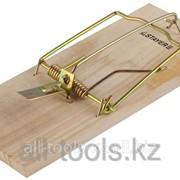 Мышеловка Stayer Standard , деревянное основание, малая Код:40501-S фото