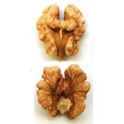 Грецкий орех - очищенный (Молдова) / Walnut kernel (Moldova) фото