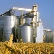 Порционные зерносушилки S2 фото