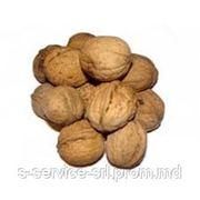 Грецкий орех в скорлупе (Молдова) / Walnut in shell (Moldova) фото