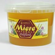 Полифлерный мёд 1,2 кг. фото