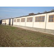 Farm + Warehouse, 2450 m2 — FOR SALE фото