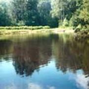Биорепарат Понд Трит ТМ MICROZYME для очистки и восстановления биологического баланса водоема фото