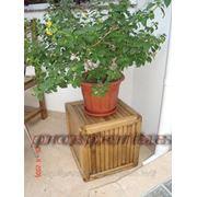 Декорации из дерева, декор, декоративное панно, декорации для бара, декоры, декоративное оформление фото