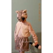 Анимационный костюм Енот С1089 фото