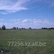 Продаются земли индустриально-логистического парка вблизи г. Алматы фото