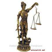 Юридические услуги Молдова фото