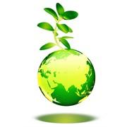 Экологическое сопровождение фото