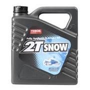 Полностью синтетическое масло Teboil 2T Snow фото