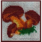 Схема для вышивания бисером Украинка - грибочки фото